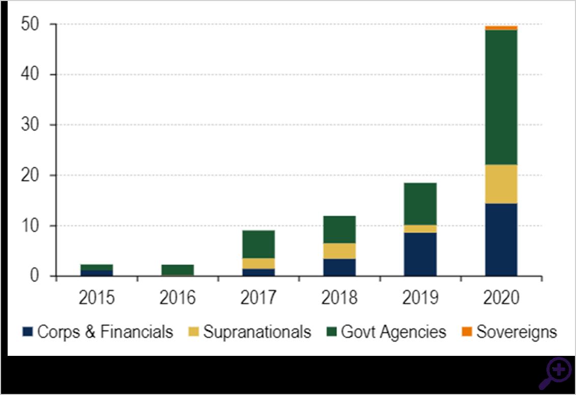 Social bond issuance has taken of in 2020