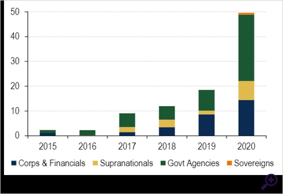 De uitgifte van sociale obligaties heeft een vlucht genomen in 2020